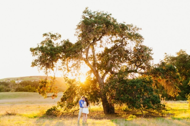 Orange County sunset engagement session in oak trees