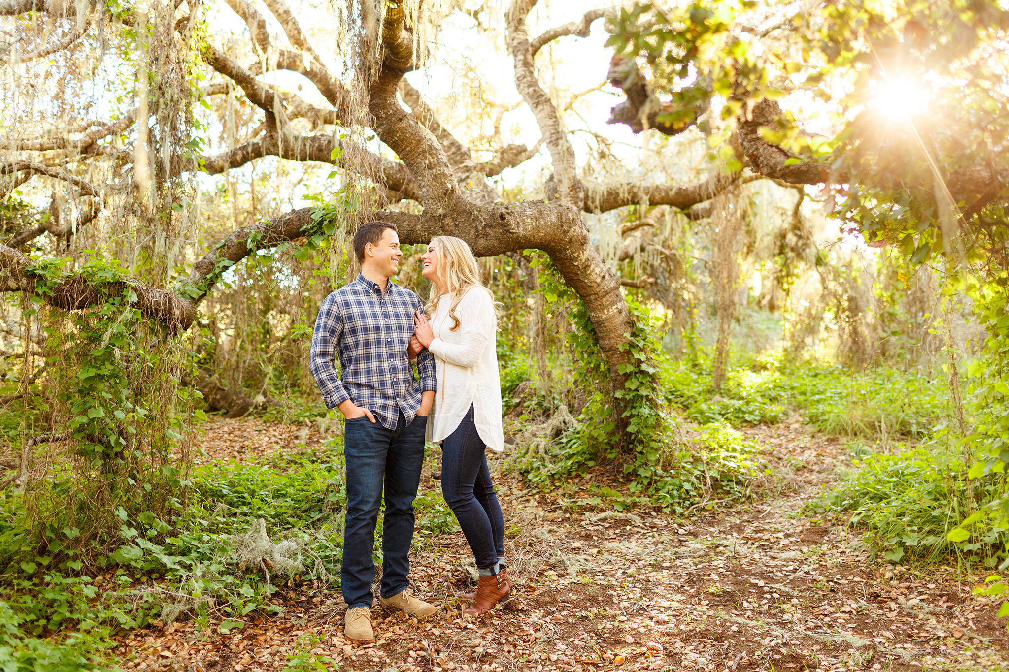 Gorgeous greenery in the oak trees for a San Luis Obispo engagement session